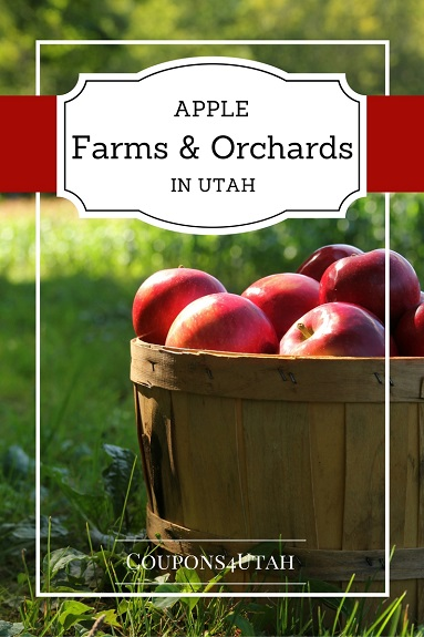 Apple Farms and Orchards in Utah - Coupons4Utah